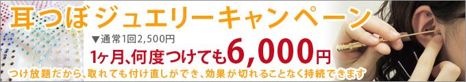 コスモ整骨治療院(キャンペーン)